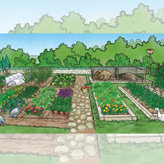 82 Tips Berkebun Berkelanjutan - Berkebun Organik